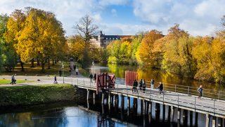 デンマークが幸福な理由と、日本が学ぶこと、できることは何か?