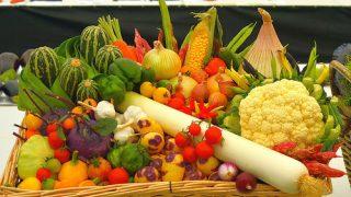 健康のため、腸内細菌と酵素を増やす方法はこれだ!