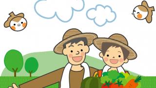 じゃがいもの栽培方法、肥料や種芋の扱いや植え付け方法