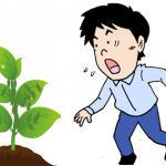 アブラムシの駆除に農薬を使わず、片栗粉を使ったら効果があった!