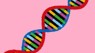 人間の遺伝子治療とゲノム編集の違いと問題点